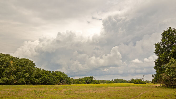 Prognoza pogody na pięć dni: jeszcze nie rozstajemy się z deszczem