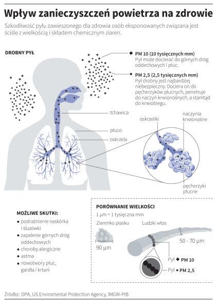 Wpływ zanieczyszczeń powietrza na zdrowie
